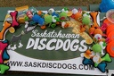2013 Sask Disc Dogs Trial